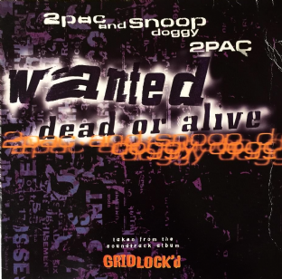 "2Pac & Snoop Doggy Dogg - Wanted Dead Or Alive (12"") (G-VG/G)"